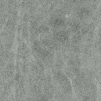 S10195_08